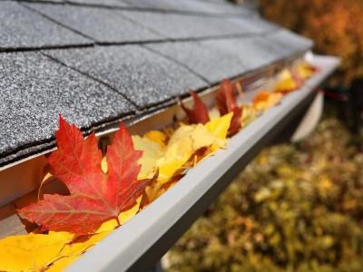 Сезоны жизни дома: Осень - защита дома от дождей
